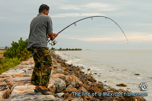 The life of a Mexican fisherman