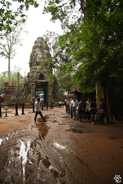 visitors making their way through the jungle the the temple