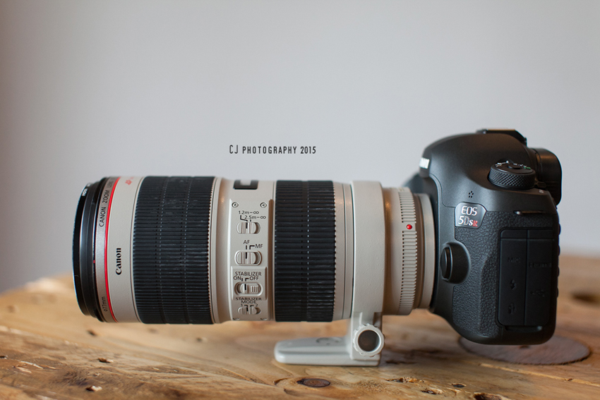 Canon EOS 5DS R with Canon EF 70-200mm f/2.8L IS II USM